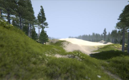 Scena z wirtualnego lotu nad SPN. W centrum wydma okolona przez sosny. Na pierwszym planie runo w borze bażynowym.