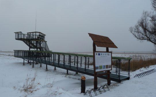 Kładka z punktem widokowym w zimowej scenerii.