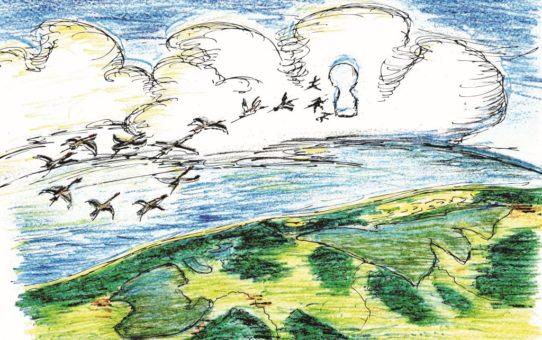 Jest to rysunek wykonany przez dziecko. Przedstawia widok Słowińskiego Parku Narodowego z lotu ptaka. Na tle białych chmur na niebieskim niebie widać klucz lecących ptaków.