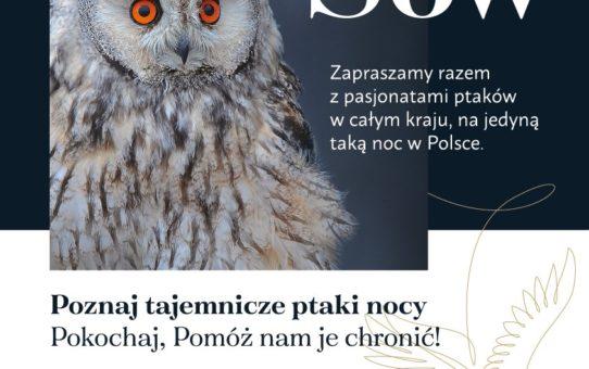 """Plakat informujący o miejscu i terminie imprezy """"Noc Sów"""". Po lewej stronie plakatu portret puchacza z pomarańczowymi, szeroko otwartymi oczami i podniesionymi na głowie piórami, wyglądającymi jak uszy. Po prawej stronie duży napis : """"Noc Sów"""" z zaproszeniem do udziału w imprezie."""