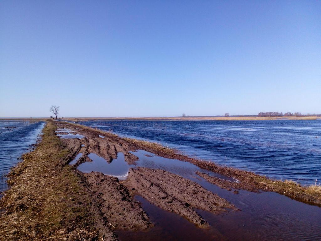 Droga gruntowa biegnąca wśród rozlewisk. Błękitne niebo iwszechobecne wody rozlane narówninach.