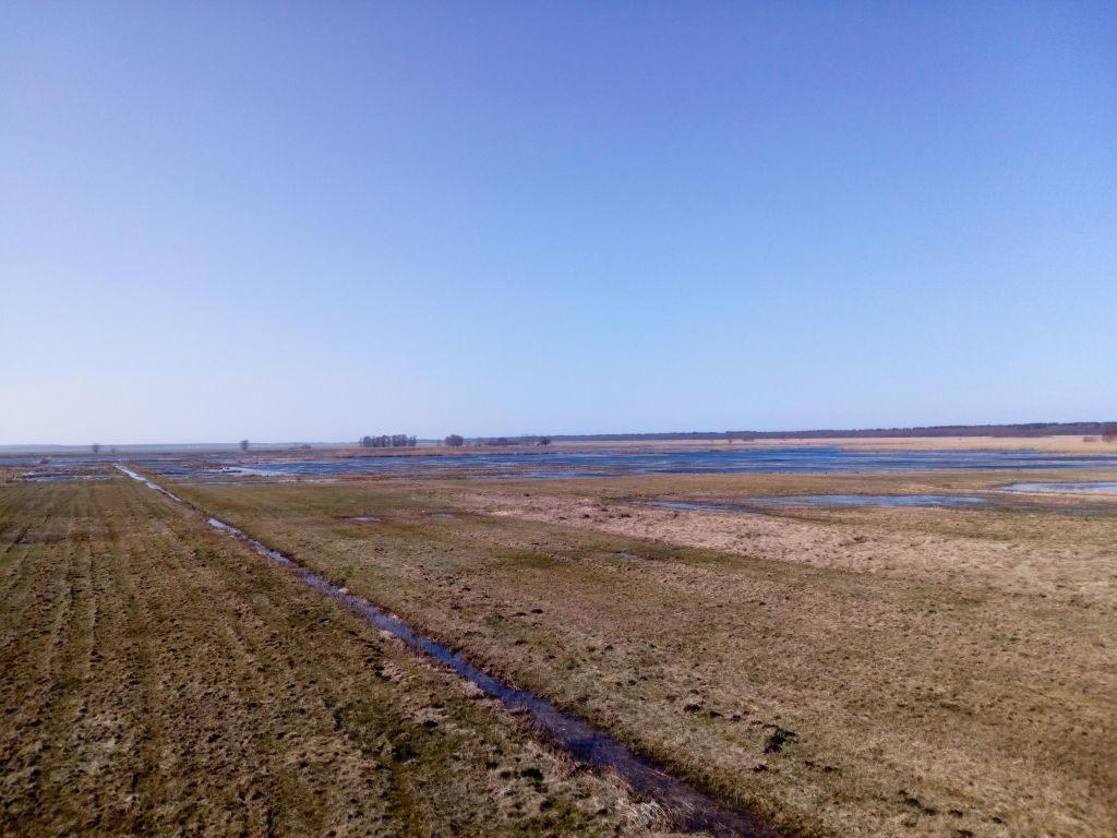 Rozległa panorama całej okolicy. Poldery są nawpół zalane, aczęściowo porośnięte trawami jesiennymi.