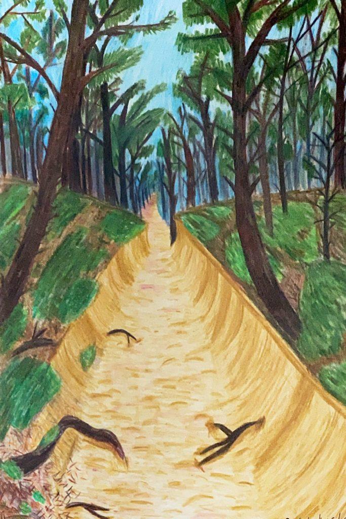 Praca plastyczna Antoniny Szkodzińskiej zLęborka;Żółta, piaszczysta droga pośród lasu sosnowego, zdrogi wystają korzenie drzew
