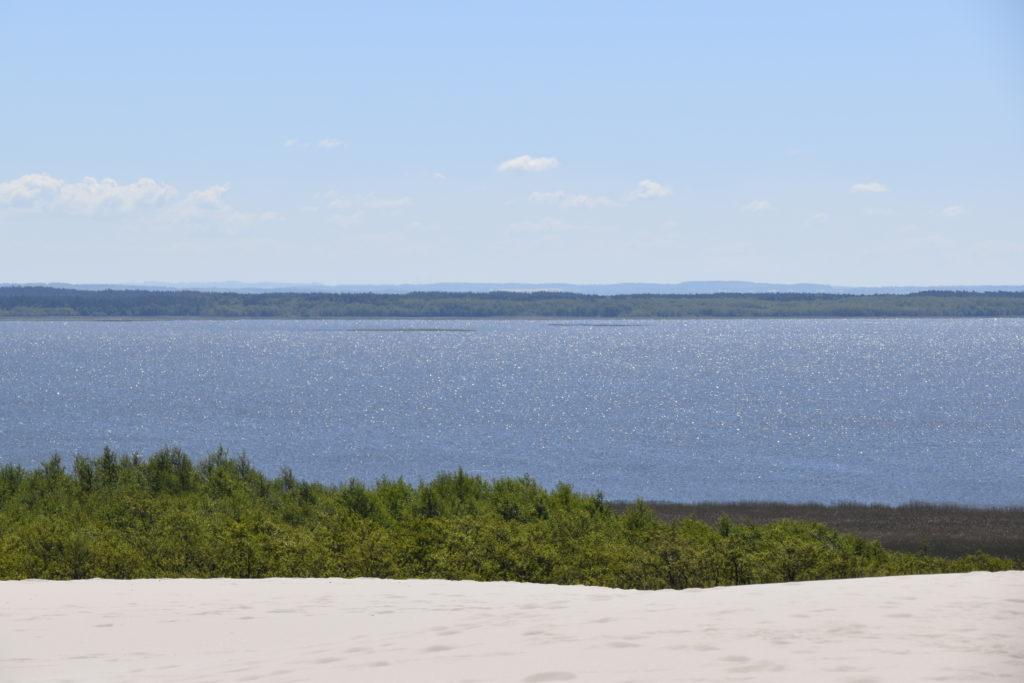 Pogodny kadr składający się zkilku barwnych pasów. Napierwszym planie białe wydmy, dalej kontrastująca zieleń olsu iskrząca się tafla jeziora zwieńczona linią lasów nahoryzoncie.